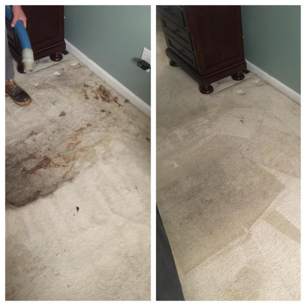 We Use Only Environmentally Safe And Nontoxic Products Offer Full Service On All Types Of Carpeting